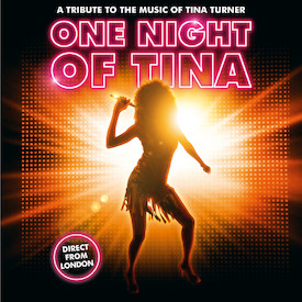 One Night Of Tina