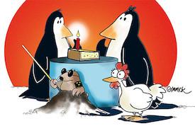 Pinguine können keinen Käsekuchen backen